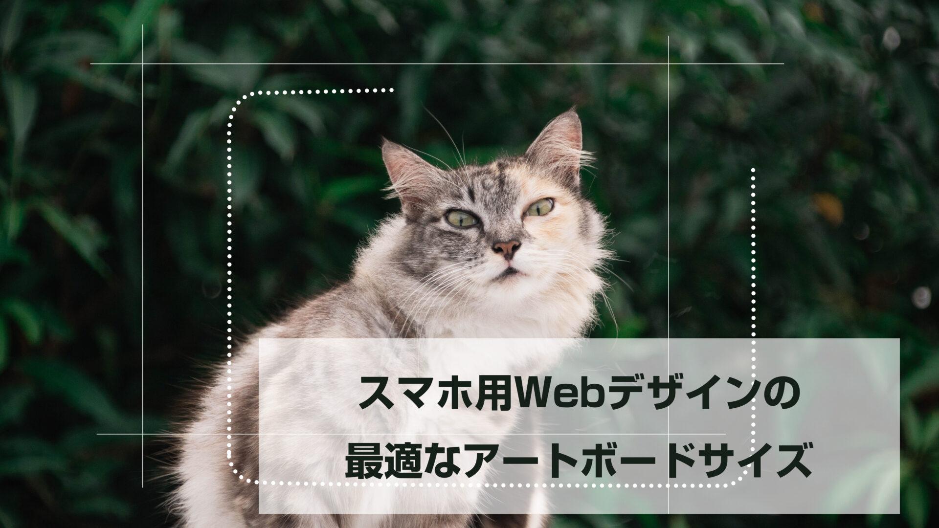 スマホ用Webデザインの最適なアートボードサイズをこれから説明する猫のイラスト